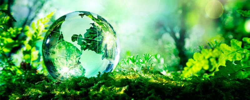 medioambiente_ampliada